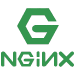 Raspberry Pi docker Nginx Web Server